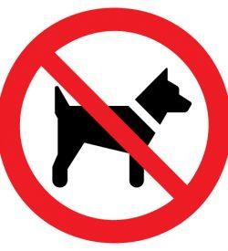 Dieren verboden