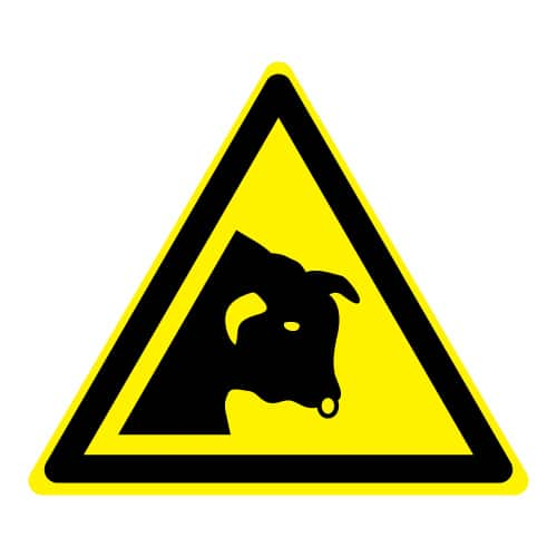 Waarschuwing stier